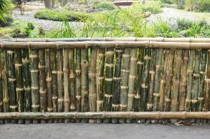 Bamboo_Fence_-_Agri-Horticultural_Society_of_India_-_Alipore_-_Kolkata_2013-01-05_2371